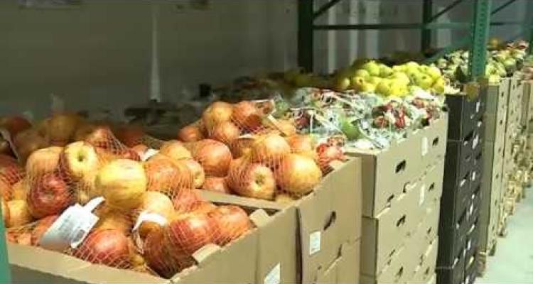 Video for Гипермаркет оптово-розничной торговли «РЯДЫ Мытищи»